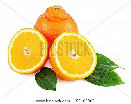 Fresh orange fruit with green leaves isolated on white background. Closeup.