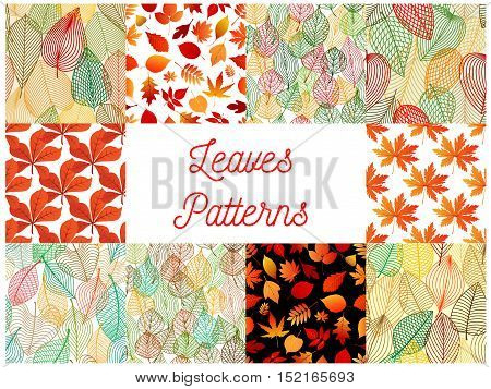 Autumn fallen leaves seamless patterns set with orange and red autumnal foliage of maple, oak, chestnut, birch and rowanberry trees