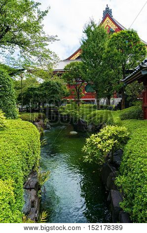 Small river pond surrounded by green shrubs in Japanese garden with Shinto shrine on the background. Senso-ji or Asakusa Kannon Temple in Tokyo Japan
