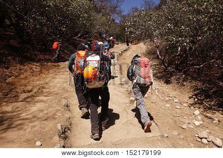 KHUMBU, NEPAL - APRIL 30, 2014: Trekker descending from Everest base camp heading to Tengboche monastery village