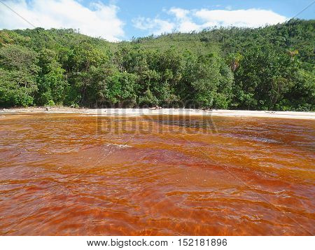 Red water. Exotic landscape with high contrasts of red water and the green of the jungle. Canaima Lagoon, Venezuela