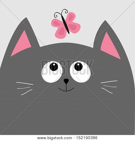 Gray cat head looking at butterfly insect. Cute cartoon character. Pet baby collection Card. Flat design. Blue sky background. Vector illustration.