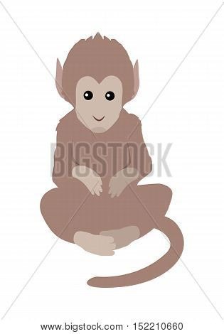 Brown monkey illustration. Funny monkey sitting isolated on white background. Animal adorable mammal monkey vector character. Monkey icon. Cute chimpanzee cartoon. Wildlife character