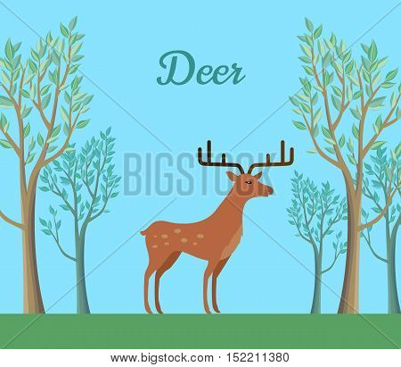 Red deer in the forest. Ruminant mammal with antler. Red deer, sika deer, barasingha, reindeer. Deer in tundra or in tropical rainforest. Wildlife concept. Herbivorous animal. Vector illustration