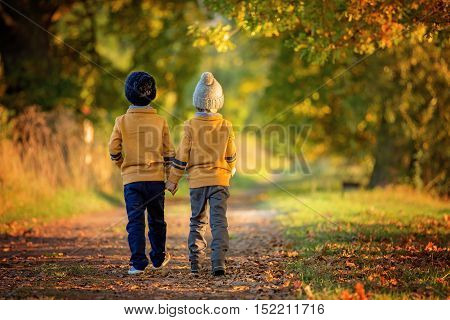 Two Children, Boys, Walking On The Edge Of A Lake On A Sunny Autumn Afternoon