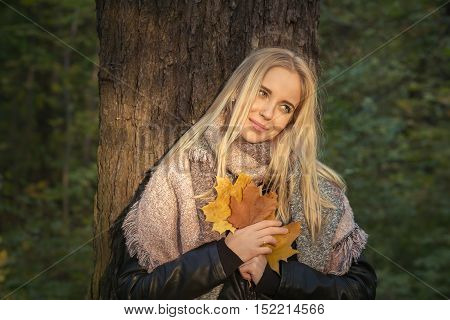 happy blond girl with maple leaves hear tree, toned image