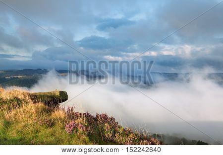 British Moors in Mist with Heather Flowers in Season