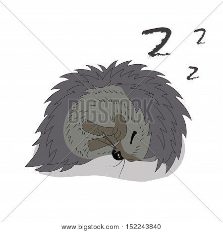 Sleeping hedgehog sketch drawing isolated on white background. Image graphic style of hedgehog.