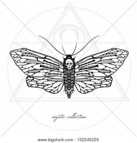 mystic illustration with dead head moth, vector butterfly with mystic signs, vector illustration