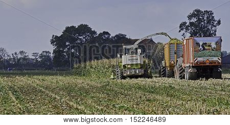 YSBRECHTUM, THE NETHERLANDS - OCTOBER 12, 2016: The final stretch of the maize harvest. A Claas chopper, a loaded and an empty silage wagen with advertisement on back.