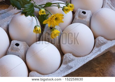 Fresh eggs in carton with yellow spring wildflowers.