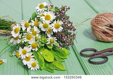 posy of chamomile, thyme and sage lies on a table