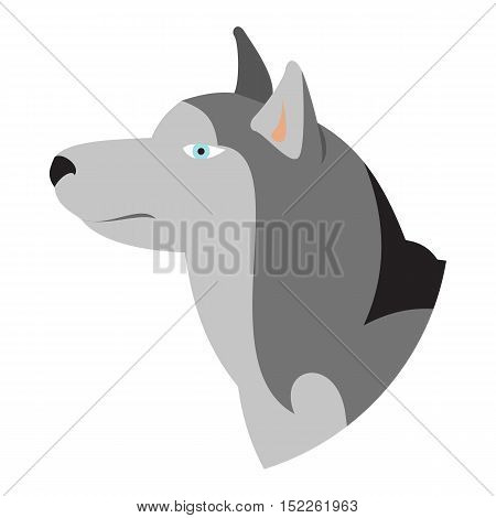 Pedigree dog head husky siberian isolated on white background. Vector illustration