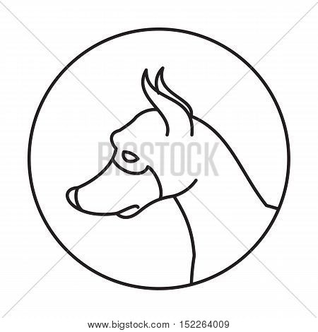 Dog head in a linear style. Doberman pinscher muzzle animal, vector illustration