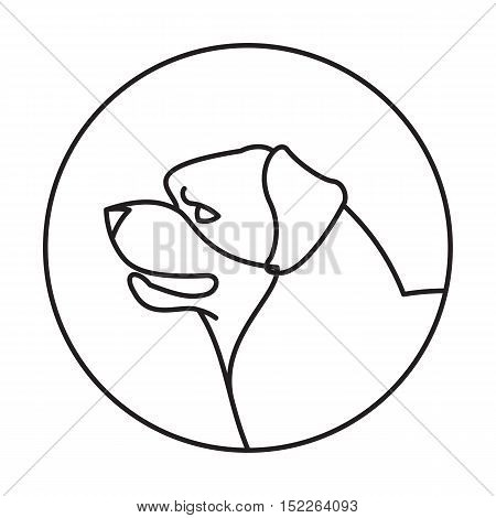 Dog head rottweiler in a linear style. Purebred companion pet, vector illustration