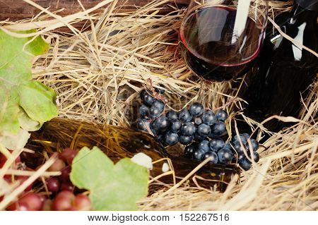 Bottle of wine, glass and grape in a straw