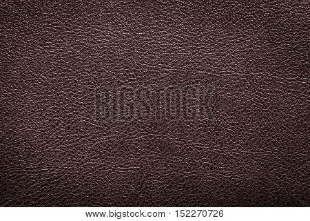 Deep brown leather texture or leather background for design with copy space for text or image. Rough leather fabric.