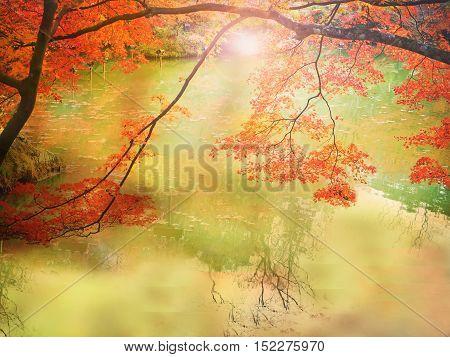 Blur Abstract Autumn background in Mifuneyama Rakuen Garden Saga Japan