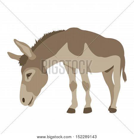 Donkey vector illustration style Flat profile side