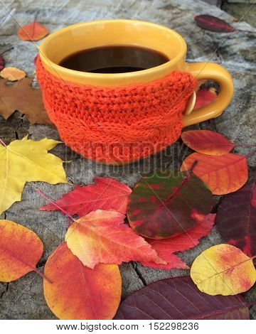 Cup of coffee on a wooden stump strewn with autumn leaves good morning selective focus
