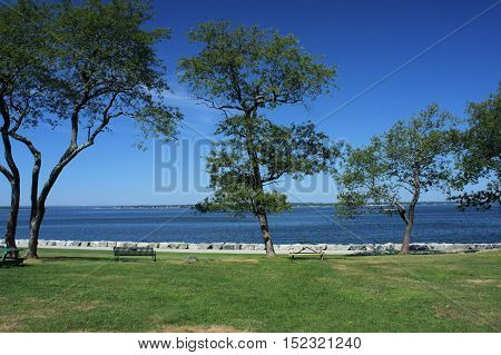 Picnic grounds on the shore of a quiet bay.
