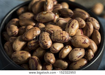 Healthy Raw Organic Cranberry Beans