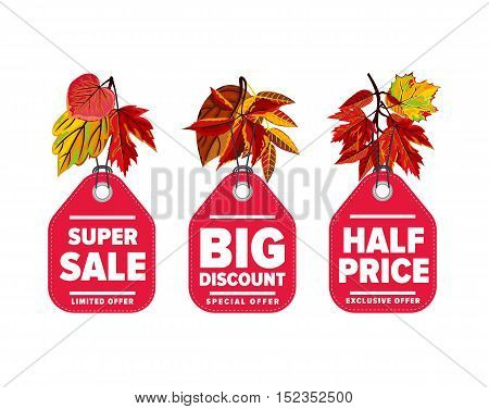 Autumn seasonal sale badges set, vector illustration. Half price, super sale and big discount labels on white background with colorful autumn leaves. Red price tag with white text. Autumnal discount
