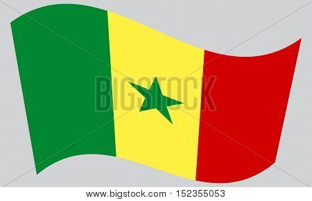 Senegalese national official flag. African patriotic symbol banner element background. Correct colors. Flag of Senegal waving on gray background vector