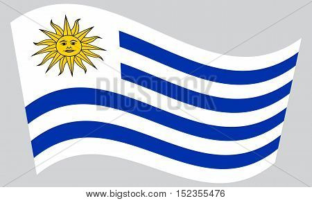 Uruguayan national official flag. Patriotic symbol banner element background. Correct colors. Flag of Uruguay waving on gray background vector