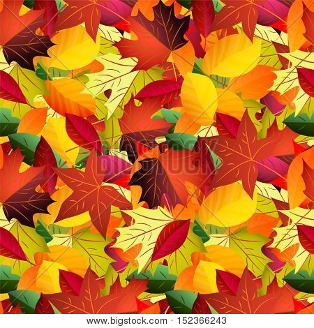 Seamless pattern with colored fallen leaves. Vector autumn background .