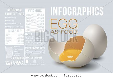 Egg infographics. Egg as food. Design template vitamins and minerals. Benefit of egg. Vector illustration