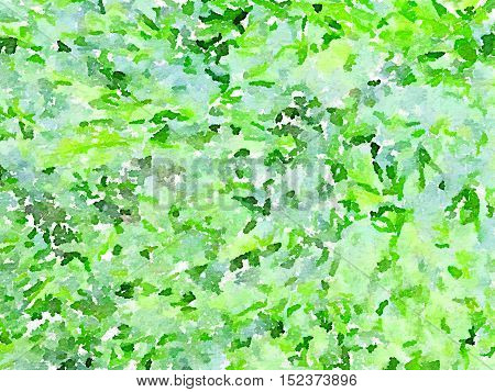 Digital watercolor painting of green seaweed on the sea shore. Can be used as a background for text.