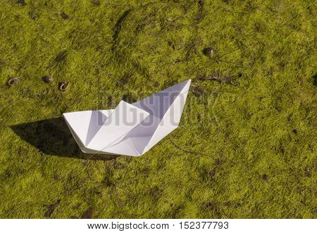 white origami paper boat on duckweed background