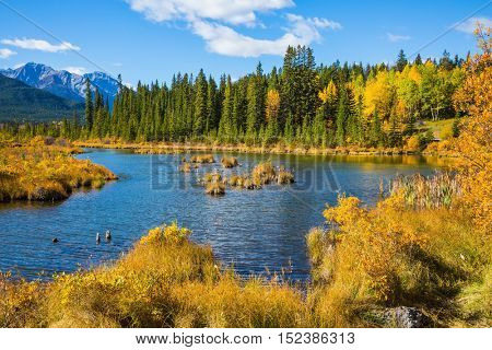 Concept of ecotourism. Magnificent sunny day in lakes Vermilion. Canadian province of Alberta, the Rocky Mountains, Banff