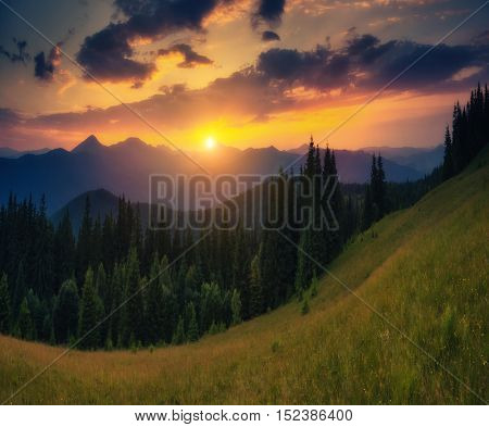 Picturesque view of the mountains that glow under sunlight. Dramatic morning scene. Location place Carpathian national park, Ukraine, Europe. Artistic picture. Beauty world. Warm toning effect.