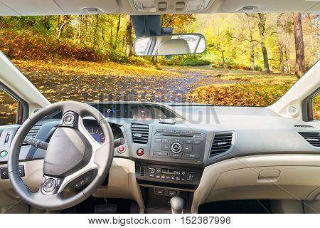car windscreen with country fall road, view inside out
