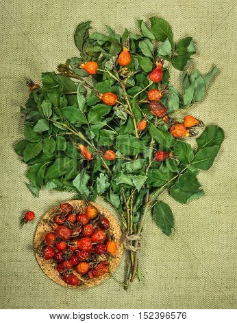 brier eglantine wild rose. Dried herbs for use in alternative medicine spa herbal cosmetics herbal medicine preparing infusions decoctions tinctures powders ointments butter tea bath.
