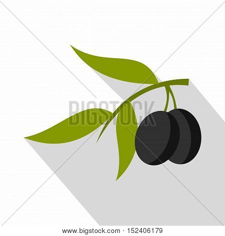 Fresh olive tree branch with olives icon. Flat illustration of olive tree branch vector icon for web isolated on white background