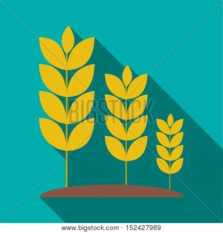 Wheat germ icon. Flat illustration of wheat germ vector icon for web