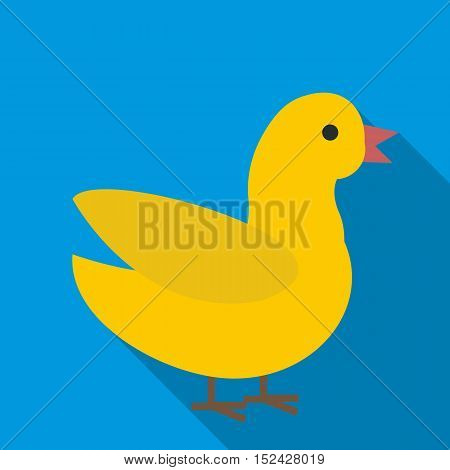 Duck icon. Flat illustration of duck vector icon for web