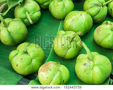 Elephant apple or chalta of south east asia on banana leaf.