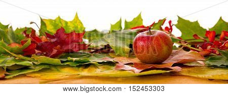 Colorful background of autumn leaves and apple..Abstract background of autumn leaves. Autumn background.