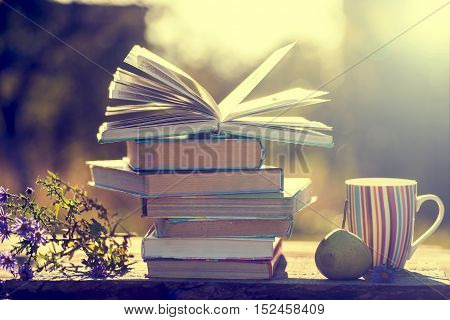 Books on wooden table on natural background. Toned image. Soft focus