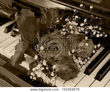 Dark rose on the piano flaps - greeting card