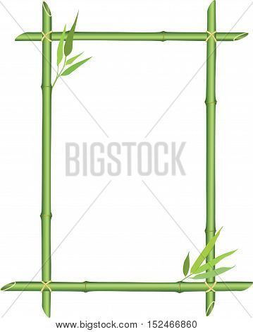 Floral frame. Nature background with bamboo branch and leaves and copy space for text.