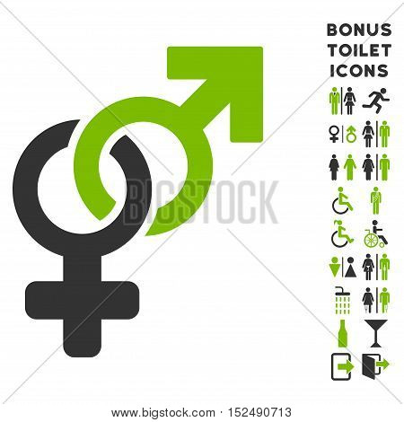 Heterosexual Symbol icon and bonus man and female restroom symbols. Vector illustration style is flat iconic bicolor symbols, eco green and gray colors, white background.