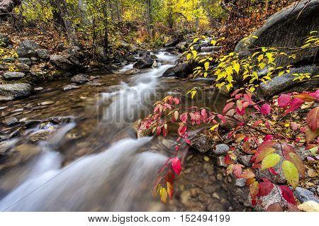 The scenic falls creek by the falls creek campground near Winthrop Washington.