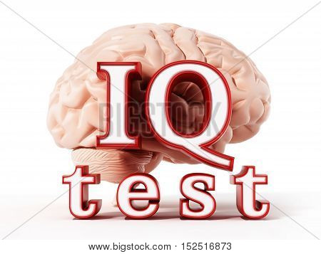 Human brain and IQ test text isolated on white background. 3D illustration.