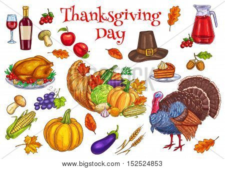 Thanksgiving traditional celebration symbols. Turkey, cornucopia food horn, pilgrim hat, pumpkin, pie, vegetables harvest, corn, apple. Vector isolated decoration elements for thanksgiving greeting card