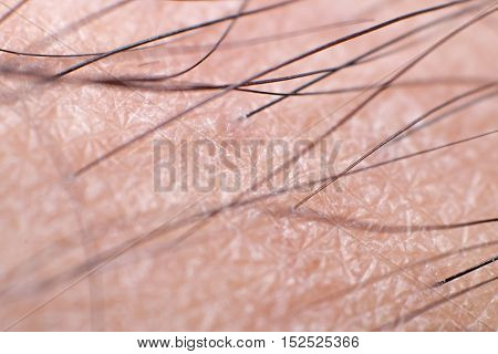 Close up Human Skin with Leg Hair